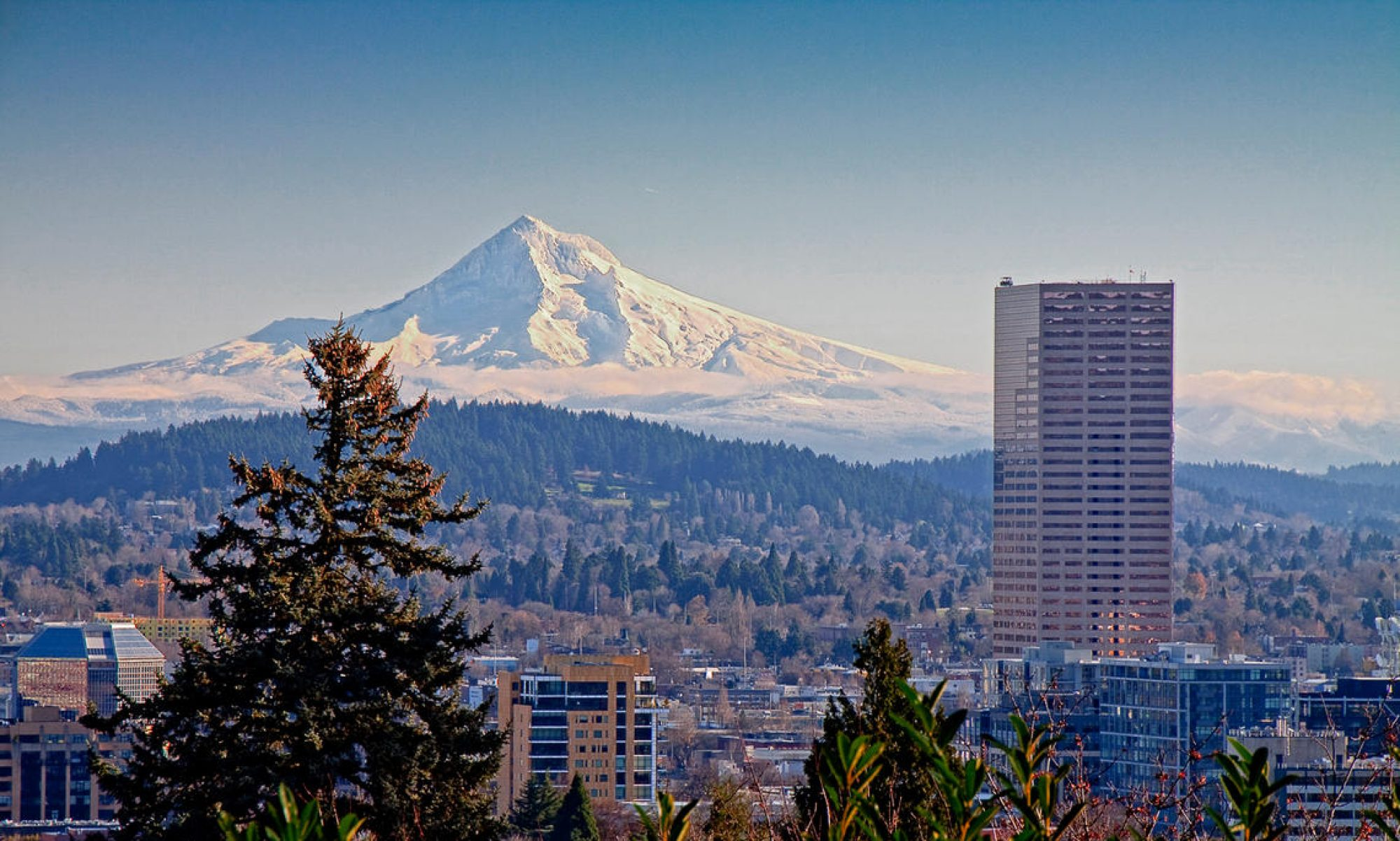 Portland Real Estate Up close
