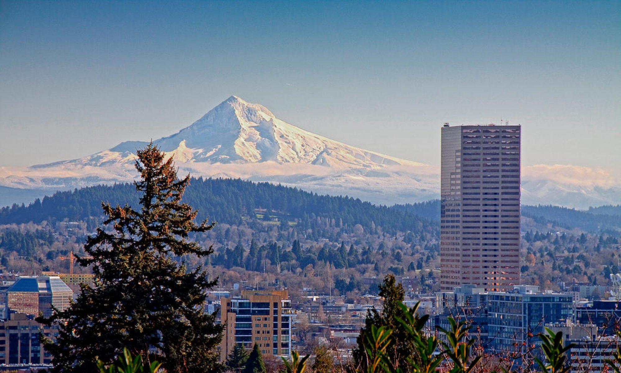 Portland Real Estate Up close